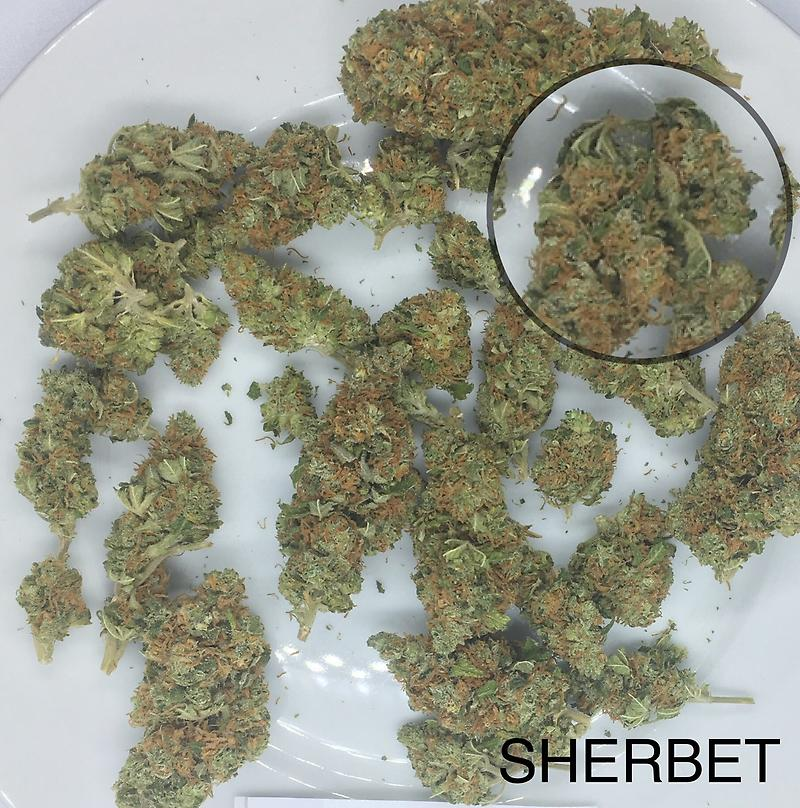 SHERBET COOKIES DUTCH A+
